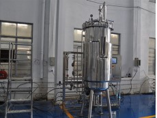 Double mechanical seal Production fermentation system 300 liter