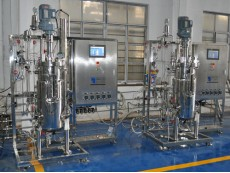 Vaccine bioreactors Double mechanical seal: double seal secure protection